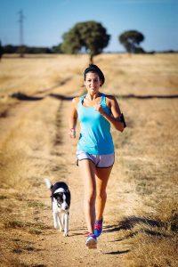 Hunde können gute Trainingspartner beim Joggen sein.