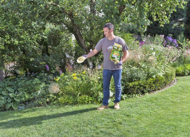 Das Frühjahr ist der beste Zeitpunkt, um Rasenflächen neu anzulegen oder Lücken im vorhandenen Grün zu schließen. Ein Spezialdünger für die Rasenneuanlage und Nachsaat schafft die Basis für gesundes Wachstum.