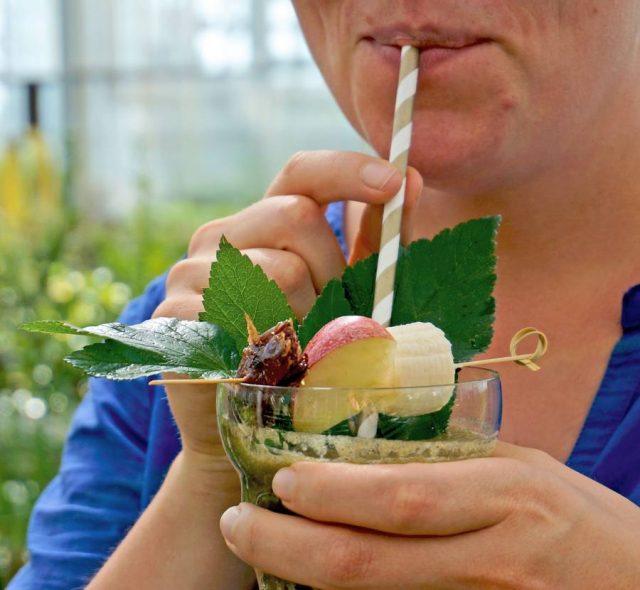 Mit Kräuter-Smoothies kann man gesundes Grünzeug auch Gemüsemuffeln schmackhaft machen.