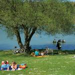 Ellertshäuser See