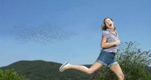 In schwül-regnerischen Sommern können Mücken sich zu einer regelrechten Plage entwickeln.