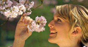 Tipps für Pollenallergiker