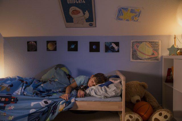 Ruhig schlafen dank Fliegengitter