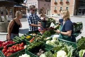 Begeben Sie sich auf die Spuren des traditionellen Gemüseanbaus in Gochsheim.