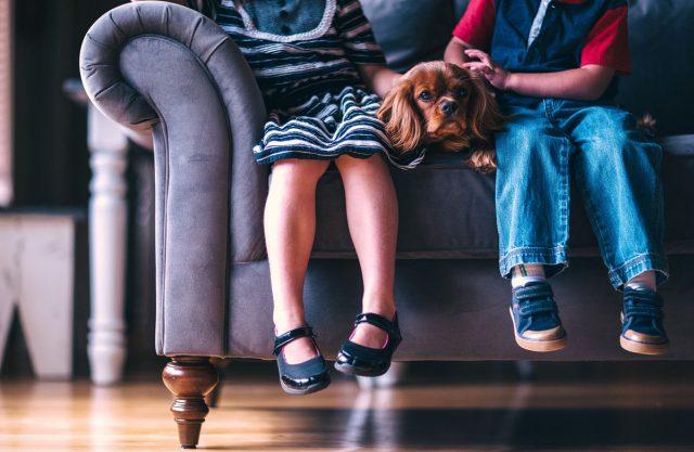 Die große Auswahl von Kinderschuhen macht es Eltern heute einfach, die optimalen Schuhe für den Nachwuchs zu finden.