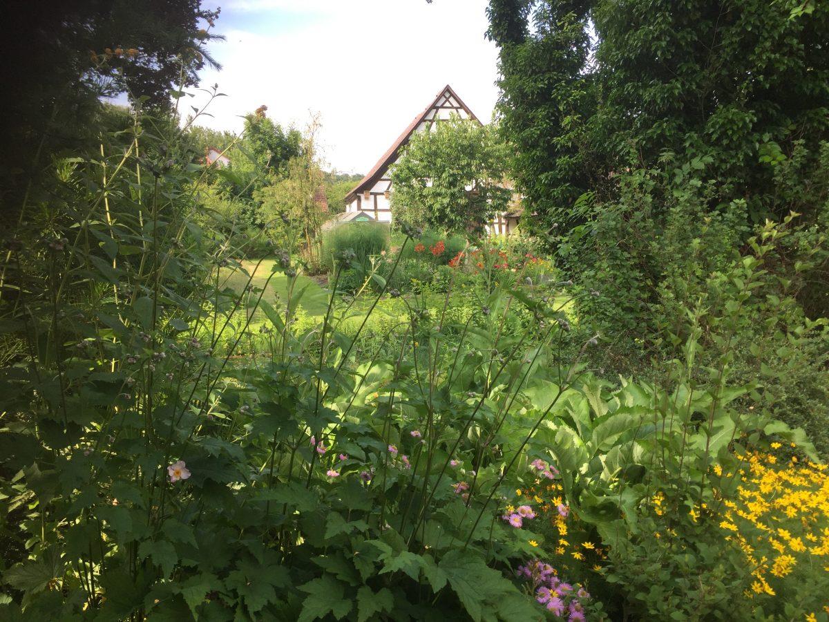 Natur Im Garten Geht In Die Dritte Runde Mainlike