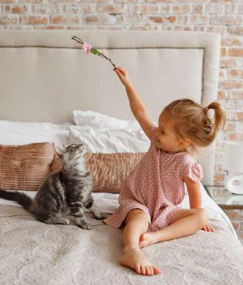 Katzen gelten als verschmust und reinlich. Doch viele eigenwillige Miezen können durchaus Zähne und Krallen zeigen und diese auch nutzen.