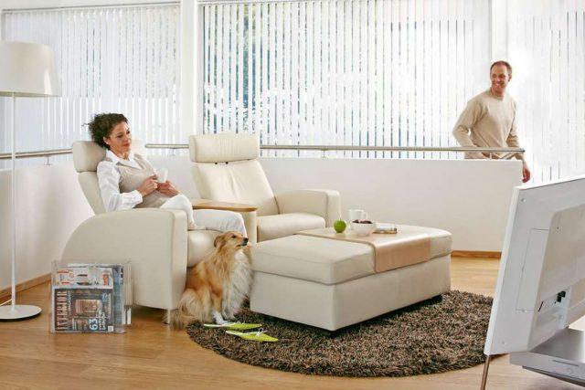 Tierhaare, Kratzspuren und undefinierbare Flecken auf dem Sofa und den Sesseln - wer mit Hund oder Katze zusammenlebt, kennt das Problem.