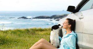 Mit dem Hund in den Urlaub fahren - das ist für viele Hundebesitzer selbstverständlich.