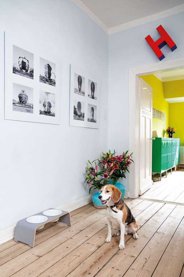 Futterstationen für den Hund können funktional und zugleich ästhetisch sein.