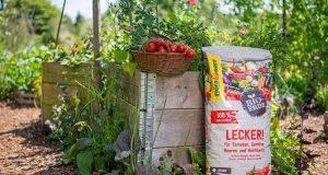 Hochbeete ermöglichen die Ernte von Bio-Naschereien bis zu zehn Monate im Jahr. Foto: djd/Floragard Vertriebs-GmbH