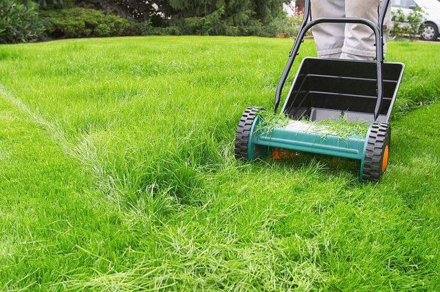 Rasen: So ein kraftvolles und strahlendes Grün wünschen sich viele Gartenbesitzer für ihre Rasenfläche. Doch dafür benötigt diese laufend Pflege - beginnend mit dem Vertikutieren im Frühjahr. Foto: djd/Floragard Vertriebs-GmbH