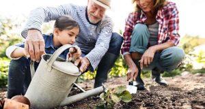 Wundheilung - Bei Arbeiten im Garten kann es schnell einmal zu kleinen Verletzungen kommen - hier ist sorgfältige Behandlung gefragt. Foto: djd/Medice/AdobeStock/Halfpoint