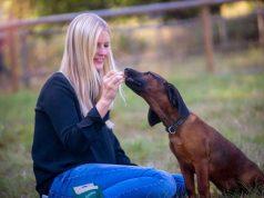 """Leckerlis: """"Gut gemacht"""": Über ein Leckerli zur Belohnung freut sich jeder Hund. Foto: djd/Christopherus"""