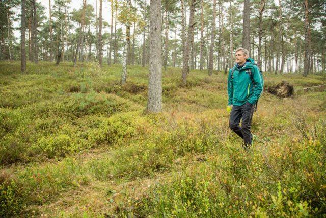 Aufgepasst beim Geocaching: Zecken fallen nicht vom Baum, sondern sind in maximal 1,5 Metern Höhe bevorzugt in Wiesen, Gräsern und Büschen, vorzufinden. Foto: djd/Pfizer/www.zecken.de