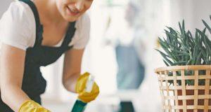 Essigessenz: Umweltexperten raten beim Frühjahrsputz von allzu viel Chemie ab. Nicht für jede Art von Schmutz oder jede Oberfläche benötigt man einen Spezialreiniger. Foto: djd/Hengstenberg/Photographee.eu - stock.adobe.com