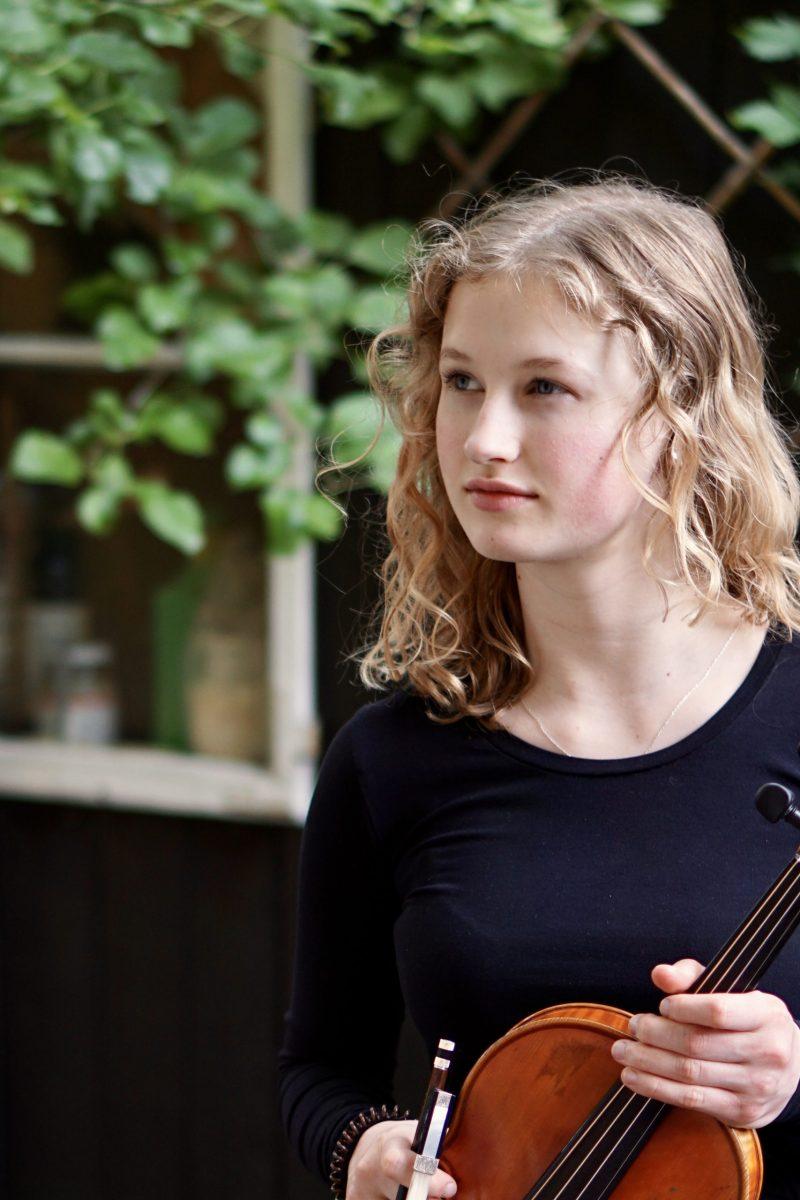 Die Deutsche Streicherphilharmonie kommt nach Bamberg