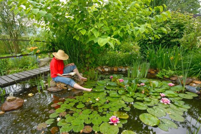 Rekordtemperaturen im Hochsommer belasten auch den Gartenteich: Wer sich daher an seinem feuchten Idyll an heißen Tagen erfreuen möchte, sollte immer für genügend Sauerstoffzufuhr im Wasser sorgen.